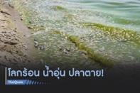 """ภาวะโลกร้อนทำน้ำอุ่นขึ้น """"ปลาทะเล-น้ำจืด"""" เสี่ยงสูญพันธุ์"""